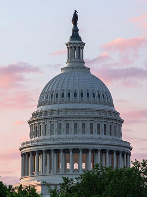 jnuts_00_us-capitol-dome-at-sunset_yesmydccool