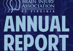 Annual Report for BIAV